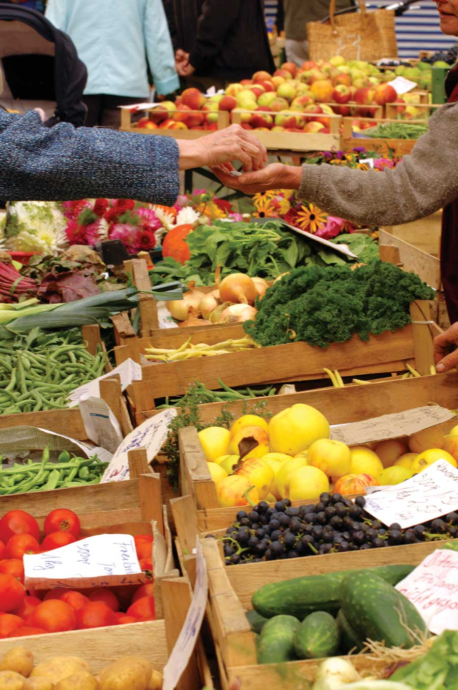 Navigating Farmers Markets | Roaming Hunger