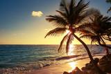 A salty island breeze