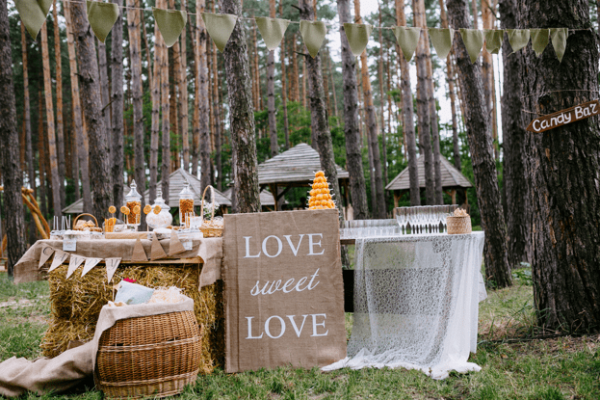 Behind the scenes of a diy rustic wedding roaming hunger diy rustic wedding decorations junglespirit Choice Image